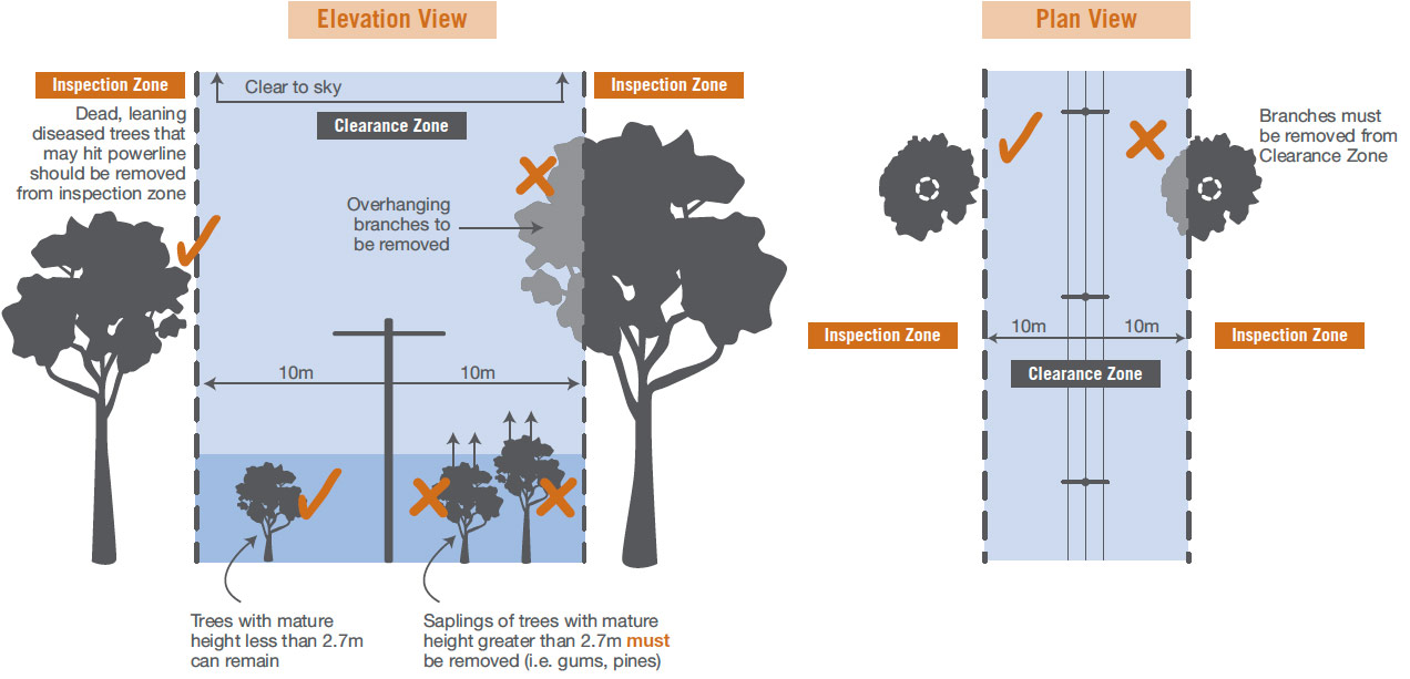 Vegetation Clearing Requirements